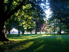 Accompanied by Shadows... (Trapac) Tags: trees light shadow england green grass leaves downs bristol geotagged spring lightshadow thedowns durdhamdown bristoldowns geo:lat=51475523 geo:lon=2615122