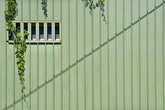 Live green - by Pensiero