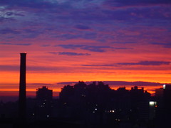 Sunrise in Porto Alegre (Elenara Stein Leito) Tags: blue brazil sky orange colors brasil sunrise wow portoalegre silhouete