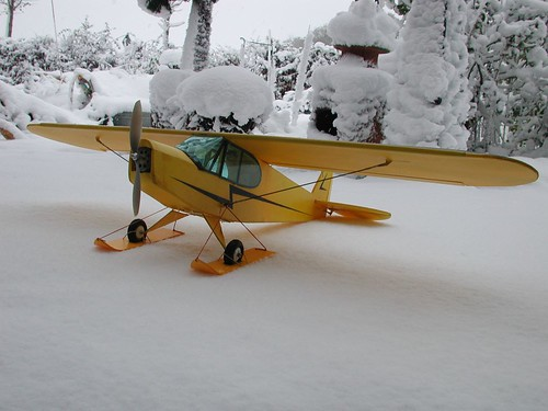 Piper Cub on ski