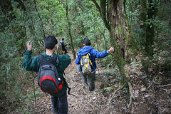 IMG_1780 (tengchwan) Tags: trek vietnam fansipan