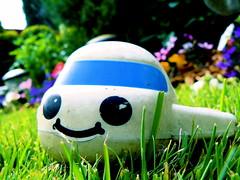 Toy plane in the garden