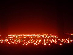butter lamps 4