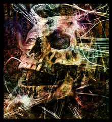 Tension Head (Mr Bultitude) Tags: trees photoshop skull eyes head web teeth tension strands mrbultitude neilcarey