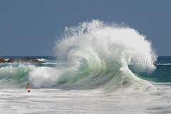 When Waves Collide (acastellano) Tags: ocean california sea summer beach water beautiful female wow ouch geotagged nice topf50 bravo surf waves photographer action quality awesome been1of100 interestingness1 symmetry spray topf300 explore hamster zoomzoom laguna wtf orangecounty capture coolio topv9999 topf100 watermark victoriabeach topf400 topf450 topf500 topf350 saside topf1000 cotcmostfavorited magicdonkey topf6000 simplyawesome exploretop20 fcwatermovement thebestphoto abigfave topf2000 dramaticnature topf3000 superbmasterpiece diamondclassphotographer flickrdiamond frhwofavs geo:lon=117761759 geo:lat=3351781 ultraselected theunforgettablepictures tup2 phlow:emote=wave topf4000 topf5000 lplarge thebeautyofpower notemaze topf7000 gi1