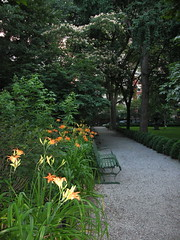Gramercy Park, Lilies by NotLiz, on Flickr