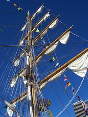 image courtesy http://www.flickr.com/photos/sailor_coruscant/