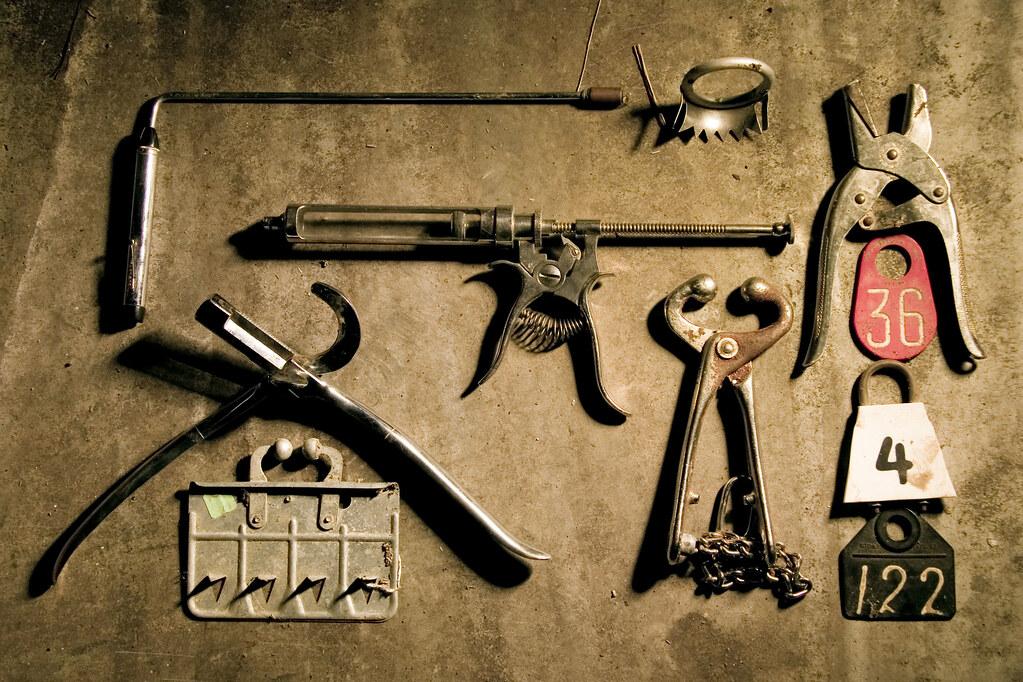 Animal Tools