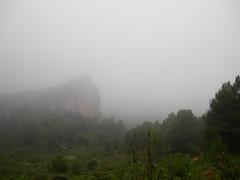Rocks   Phoenix in mist