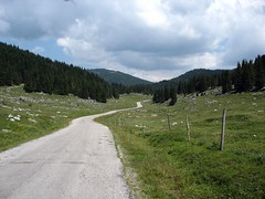 vanishingpoint (godspeed173) Tags: asiago