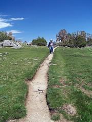 20060730 Trail