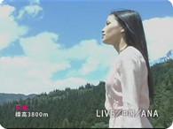 黒木メイサ_LIVE/中国/ANA『黃龍 篇』