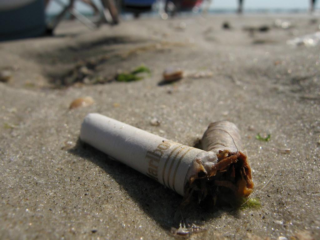 Cigarettes Fortuna USA made buy