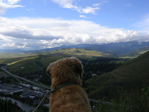 Missoula, Montana - The Best Pet Friendly Locations in the