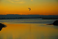 Delta (Sisapo) Tags: mar agua cielo arenas kitesurf deltadelebro sisapo skysurfer ltytr1