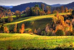Autumn Buaasen (Krogen) Tags: nature norway landscape norge natur norwegen olympus c7070 noruega lic krogen landskap noorwegen noreg trøndelag photomatix malvik