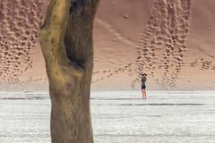At Deadvlei, Namibia (C McCann) Tags: deadvlei namibia africa dune sand dunes tree desert namibnaukluft park sossusvlei dooievlei
