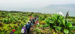 DSC06353 (Ninara31) Tags: africa nyiragongo volcano virungamountains virunga