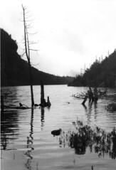 Lake in Adirondacks, Upper  NY State 1977 (joelgllespie1957) Tags: lake ny hiking adirondacks 1977
