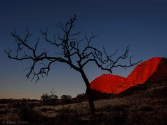 "Kata Tjuta sunset • <a style=""font-size:0.8em;"" href=""http://www.flickr.com/photos/44919156@N00/20049203584/"" target=""_blank"">View on Flickr</a>"