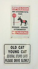 Greek sign (Marcus T Ward) Tags: old cats sign cat buildings greek g4 young lg greece stupid pefkos rhodes lgg4