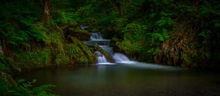 Back to the waterfalls, Abergynolwyn, Gwynedd