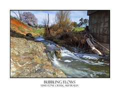 Bubbling flows at Limestone Creek Millamolong (sugarbellaleah) Tags: county trees nature water beauty rock rural creek countryside peaceful serenity limestone cherryblossom environment outback brook flowing geology storms tranquil floods bubbling wellness countrylife wellbeing cherryblosssom limestonecreek millamolong