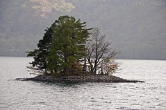 Lake Chuzenji Island, Nikko National Park, Japan (Jeff Kreulen) Tags: orange fall japan island lakechuzenji tochigiprefecture nikkonationalpark