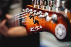 Yamaha Pacifica 611VFM Headstock. (Guitarrilia) Tags: yamaha pacifica yamahapacifica