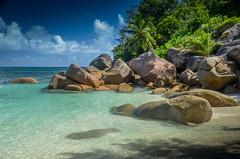 DSC_2489 (NICOLAS POUSSIN PHOTOGRAPHIE) Tags: soleil eau sable bleu coco fin vague plage rocher palmier bois seychelle turquoide