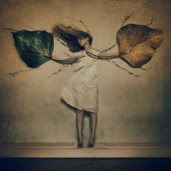 cracks and crumbles (brookeshaden) Tags: