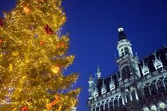 Xmas Time 02 (polbar) Tags: belgique belgië bruxelles brussels grandplace grotemarkt nightshot pom