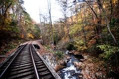 Golden Grahams (feelinviewtiful) Tags: 828 sylva nc mountains railroad bridge leaves autum fall water golden