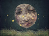 Portrait of a Super Moon (jimlaskowicz) Tags: fanciful unusual unique peculiar fantasy triptothemoon melies dreamstate dream dark ancient magical typography stars sky night artistic surreal aged victorian whimsical portrait vintage textures impressionistic supermoon moon art