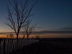 Night Falls (davepickettphotographer) Tags: evening sunset davepickettphotographer uk northamptonshire titchmarsh oundle olympuscamera
