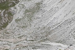 IMG_7202 (Ottimo.Piercing) Tags: valgardena mountain montagna montagne landscape paesaggio sudtirol nature montaña
