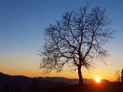 Ancora un istante (Fernando De March) Tags: tramonto sole spettacolo alpago belluno natura allaperto paesaggio