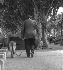(C-47) Tags: people animal dog paris blackwhite bw black noirblanc noiretblanc blanc melancholy sad friendship love walking