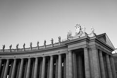 gradient (*magma*) Tags: colonnato sanpietro speter square piazza ombre shadows statue statues bernini