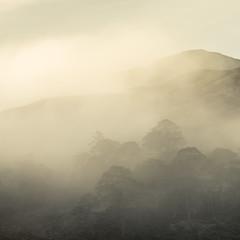 Without (jellyfire) Tags: bendamph distagont3518 elgol february highlands landscape landscapephotography scotland sony sonya7r torridon winter ze zeissdistagont18mmf35ze leeacaster wwwleeacastercom zeiss