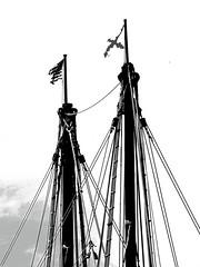 BoatMasts (ShutterLizard) Tags: sailboat rope boat mast sail
