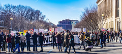 2017.02.04 No Muslim Ban 2, Washington, DC USA 00476
