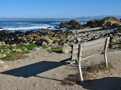 Pacific Grove, California (Jasperdo) Tags: pacificgrove california roadtrip pacificgrovemarinegardens montereypeninsula pacificocean landscape scenery bench rocks