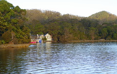 Nestled amongst the trees on Macquarie Harbour... (The Pocket Rocket) Tags: macquarieharbour strahan boats trees houses tasmania australia