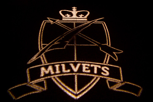"""MilVets Ball-1 • <a style=""""font-size:0.8em;"""" href=""""http://www.flickr.com/photos/144176102@N06/32977371532/"""" target=""""_blank"""">View on Flickr</a>"""
