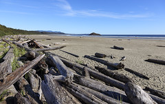 Driftwood (AnyMotion) Tags: driftwood treibholz wood holz sand beach strand sea meer sky himmel beachvisitors strandbesucher 2016 anymotion travel reisen nature natur longbeach pacificrimnationalpark vancouverisland britishcolumbia canada kanada 6d canoneos6d landscape landschaft landschaftsufnahmen colours colors farben