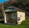 DSCF2115 (chalkie) Tags: totlandbay calshotspit