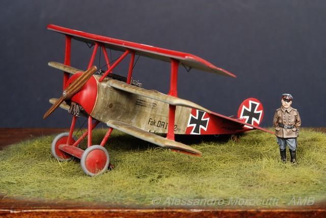 Fokker DR.I (19)