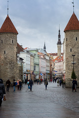Gateway of Tallinn Town (alpsekerci) Tags: architecture city town building medieval wall tower gateway
