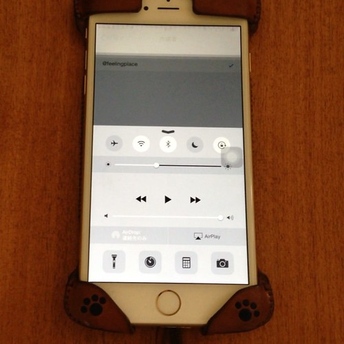 iPhone 6 Plus ディスプレイ不具合